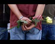 rose-flag.jpg